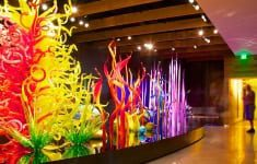 St Pete a cultural mecca on the rise with chihuly collection