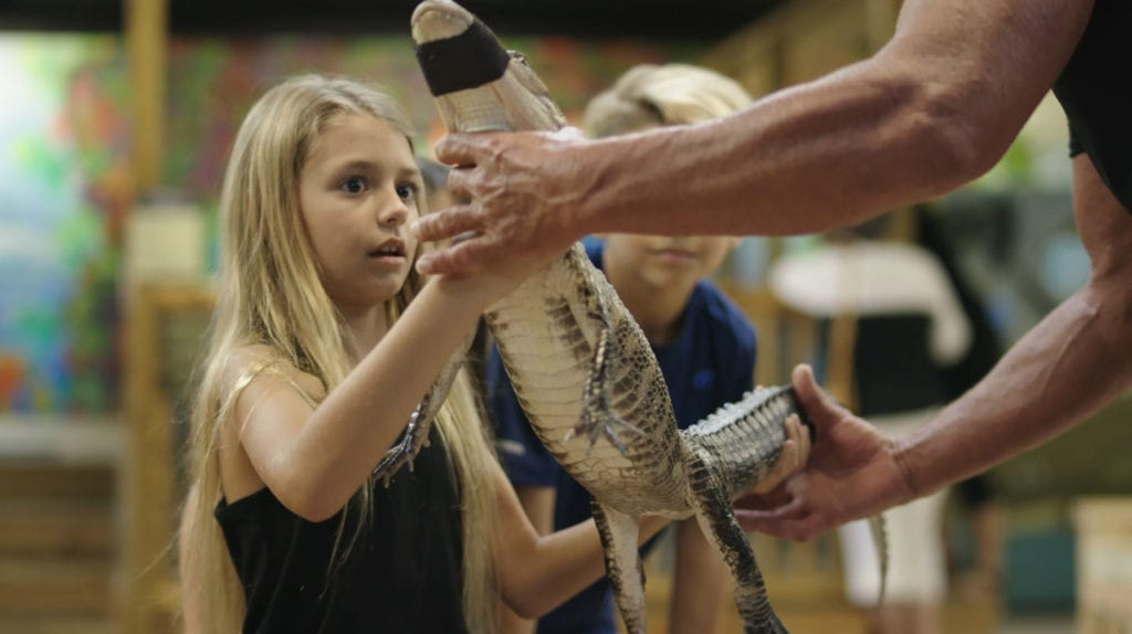 """The The Alligator & Wildlife Discovery Center is home to exotic pet surrenders and rescues, including 50 crocodilians, lizards, frogs, Sid the sloth, small mammals including 5 pigs, and aquatic life from around the world, plus a more. It is your chance to """"kiss a gator"""", feed & hold them too."""