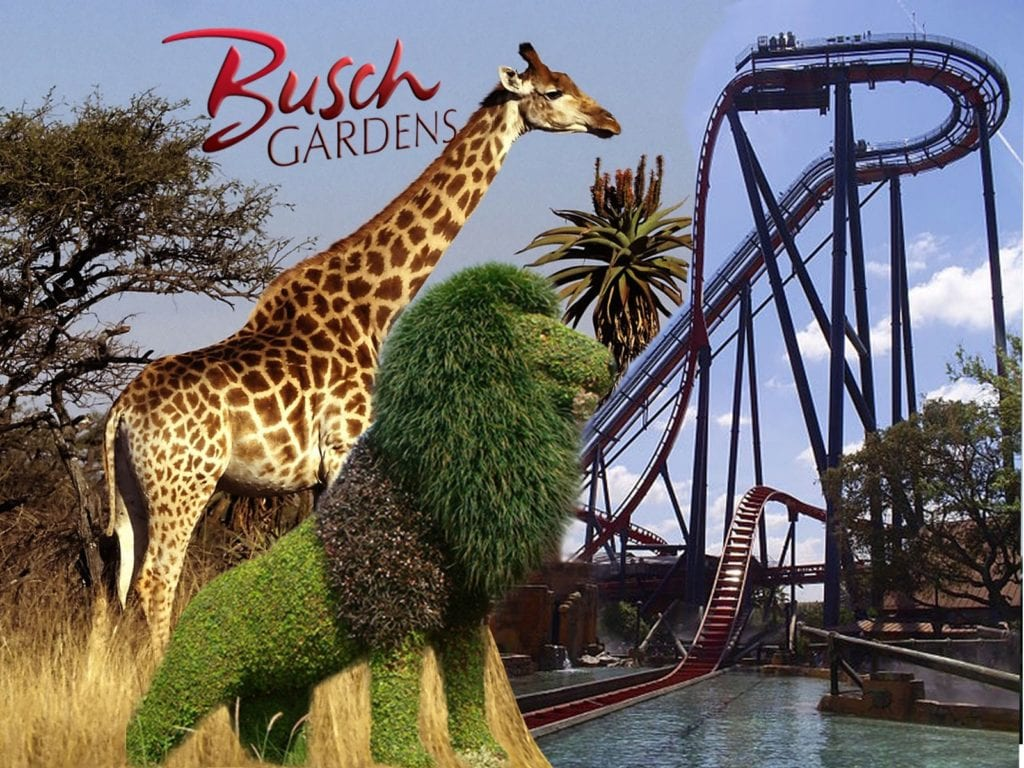 Busch Gardens® Tampa Bay theme park is the ultimate family adventure, combining world-class thrill rides, live entertainment and more than 12,000 animals! Challenge a 335-foot drop tower, Falcon's Fury, or race like a cheetah-on-Cheetah Hunt. Busch Gardens' newest attraction, Cobra's Curse puts a spin on family thrills with this one-of-a-kind spin coaster.