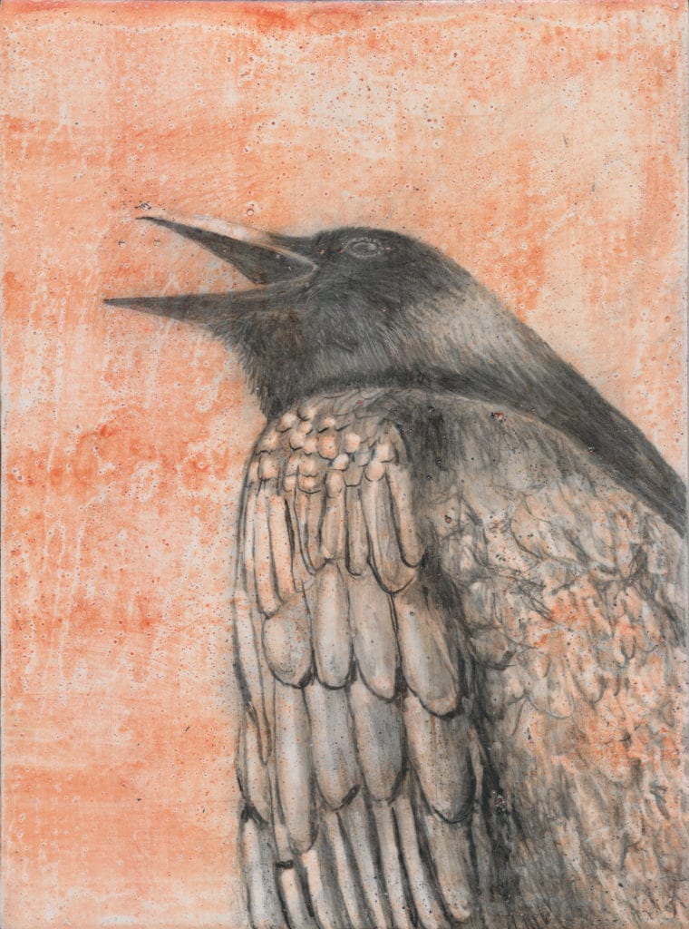Crow 16 by Karen Bondarchuk On Exhibit Now at The James Museum for the ERGO SUM: A CROW A DAY